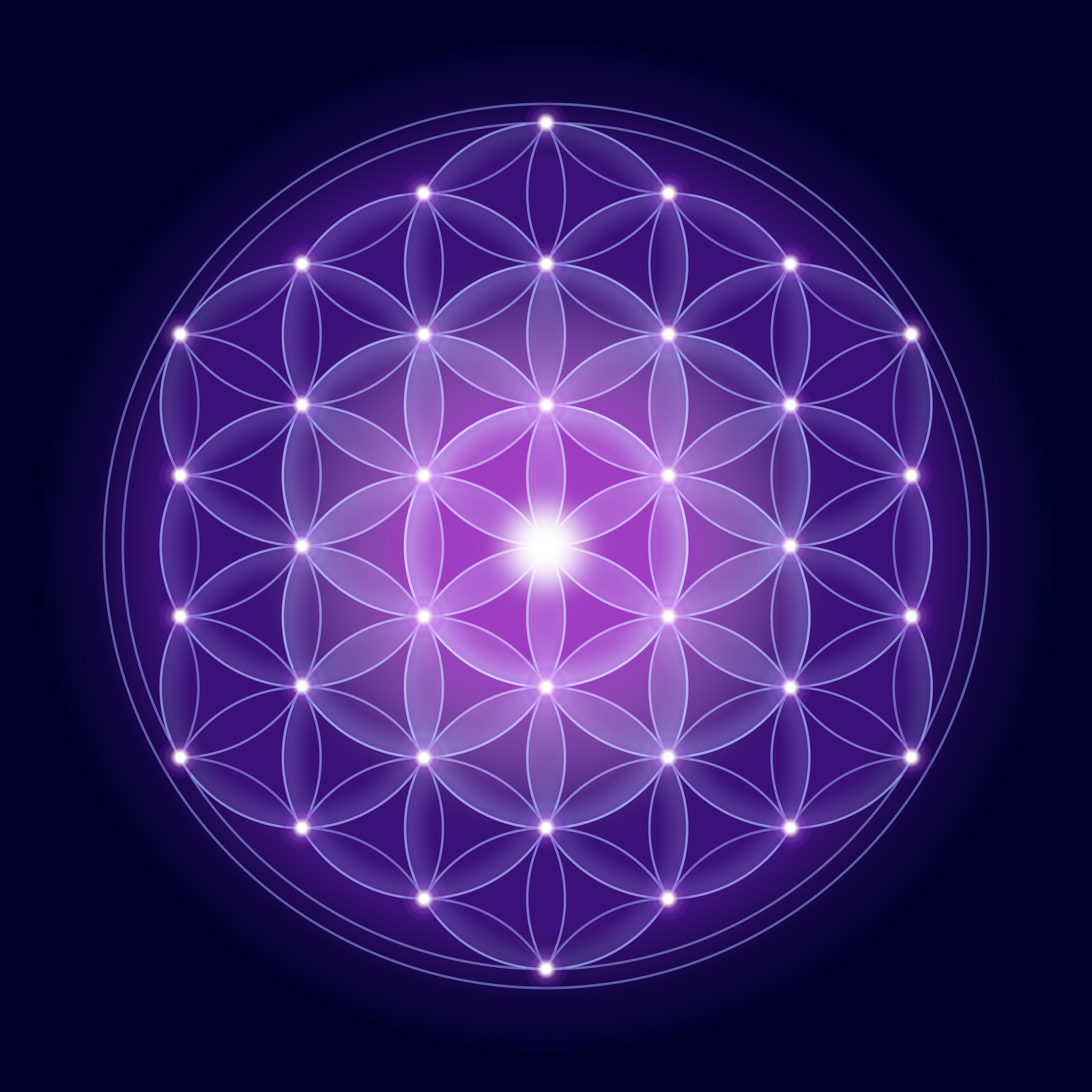 Bright Flower of Life With Stars