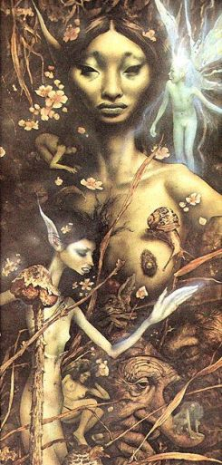 5c2b82520fb351be401fc30bfb37628d--brian-froud-faeries